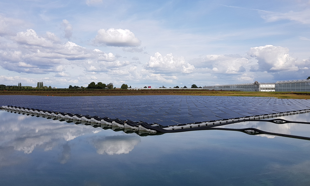 One of the largest floating solar parks powers 600 Dutch households