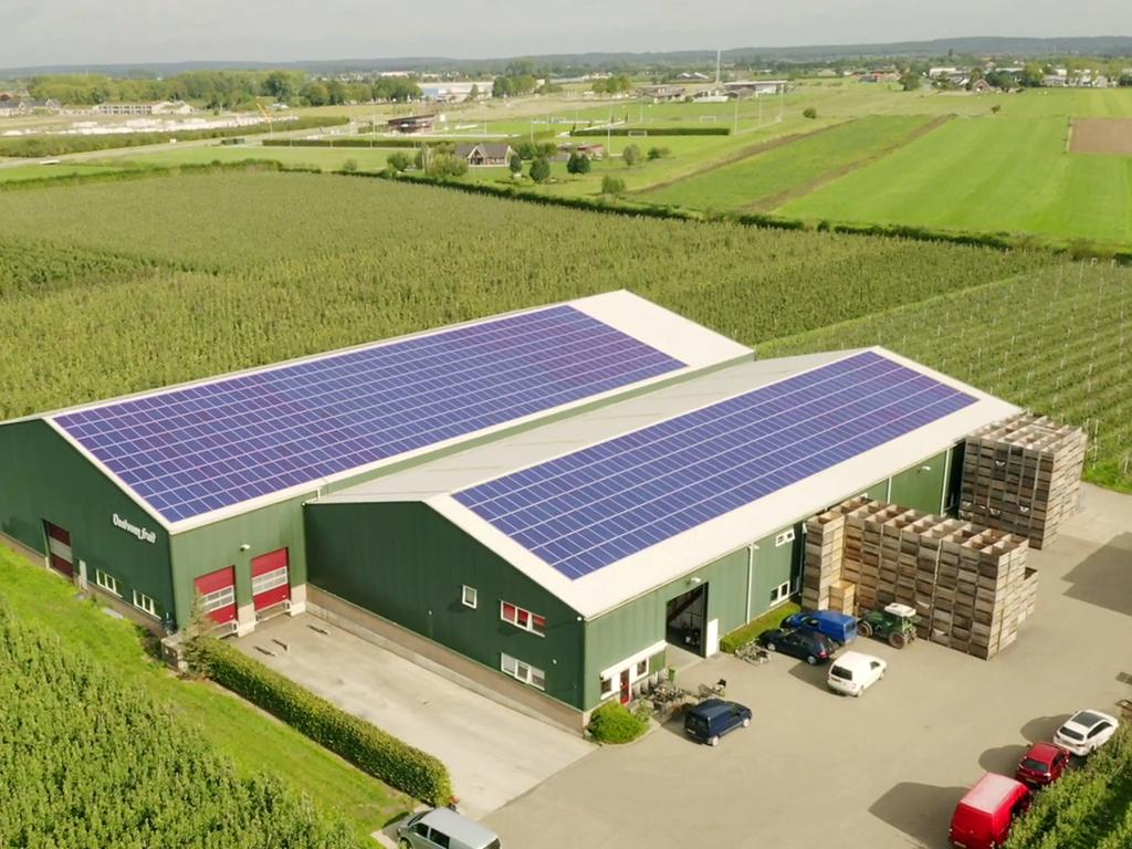 How Farmers Harvest Their Own Power with Solar Energy